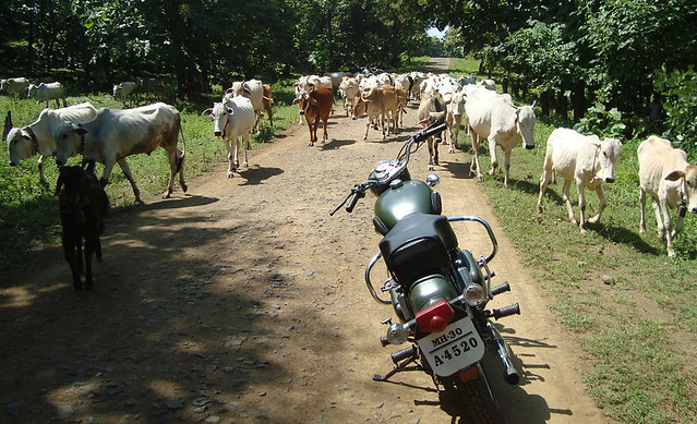 BBC - Bullet + bulls + cows