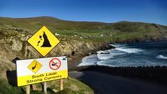 In Ireland - Beautiful Dangerous