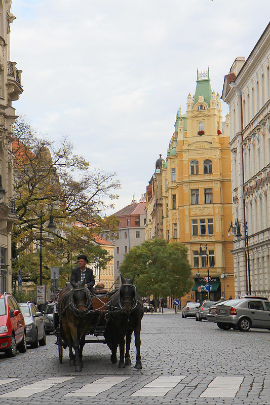 horse-carriage