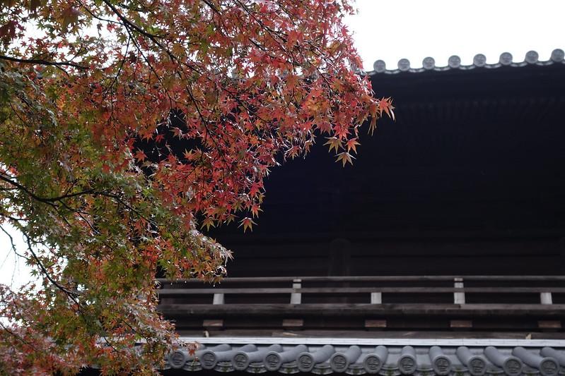 2013.11.15 京都 建仁寺