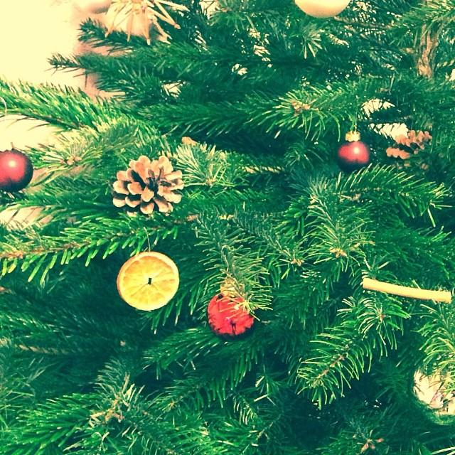 #green #winter #tree #xmas #xmastree #christmas #christmastree