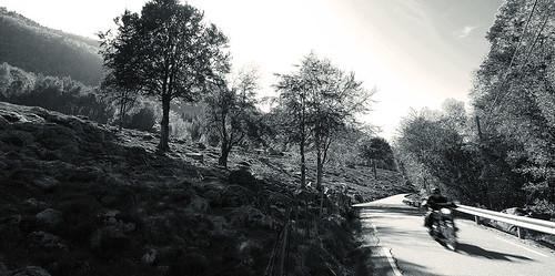 landscapes_70_20130312_1558644439