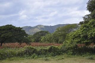 Nicaraguan Life