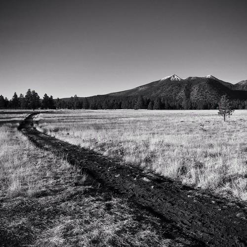 Trail meadow mountain sky