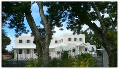 P2060045-Marine Gardens -Hastings -Barbados