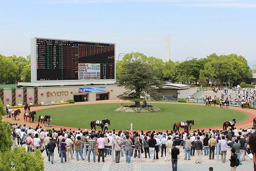 京都競馬場のパドック遠景