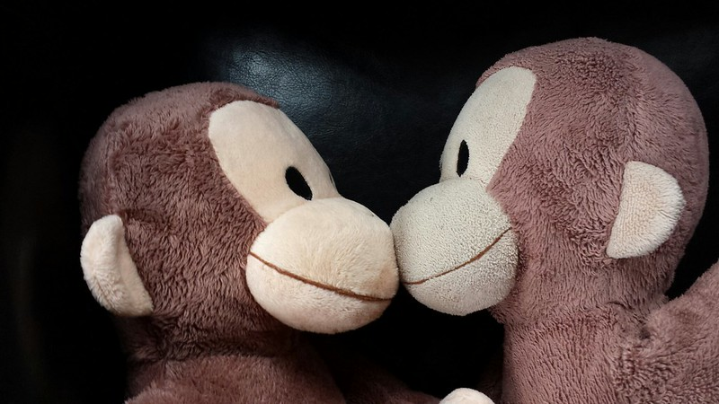 Evil twin Monkey (on the left)