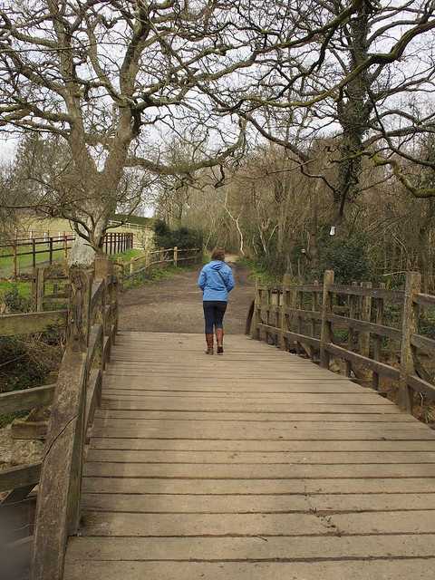 Pooh, Hartifield, Ashdown Forest, England, travel, expat, bridge