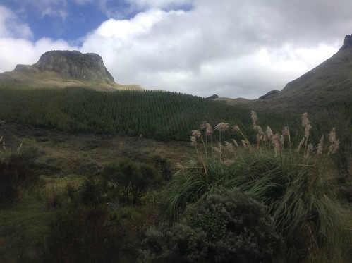 Ecuador, caja national park
