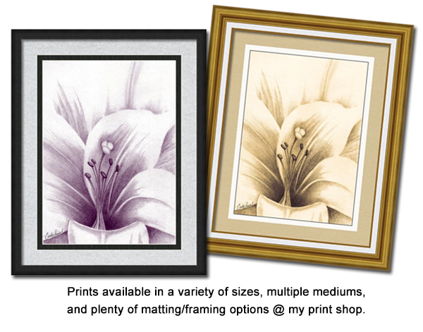 Graphite Lilly by Cindy Angiel - print options