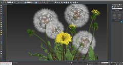 multimedia software(1.0), flower(1.0), text(1.0), graphics software(1.0), plant(1.0), organism(1.0), flora(1.0), screenshot(1.0),