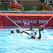 waterpolo19