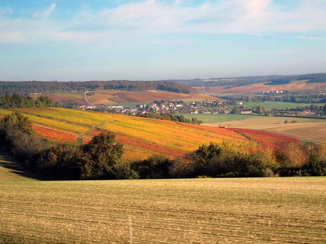 391 Rural France in Autumn