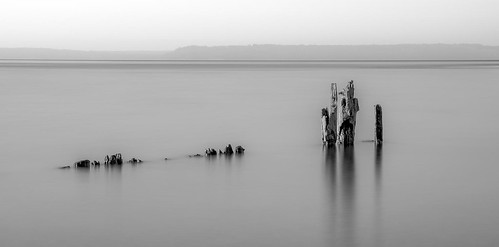 picnicpoint landscape pilings abstract naturalpattern pugetsound blackandwhite monochrome trinterphotos richtrinter fineart longexposure minimalist graphic