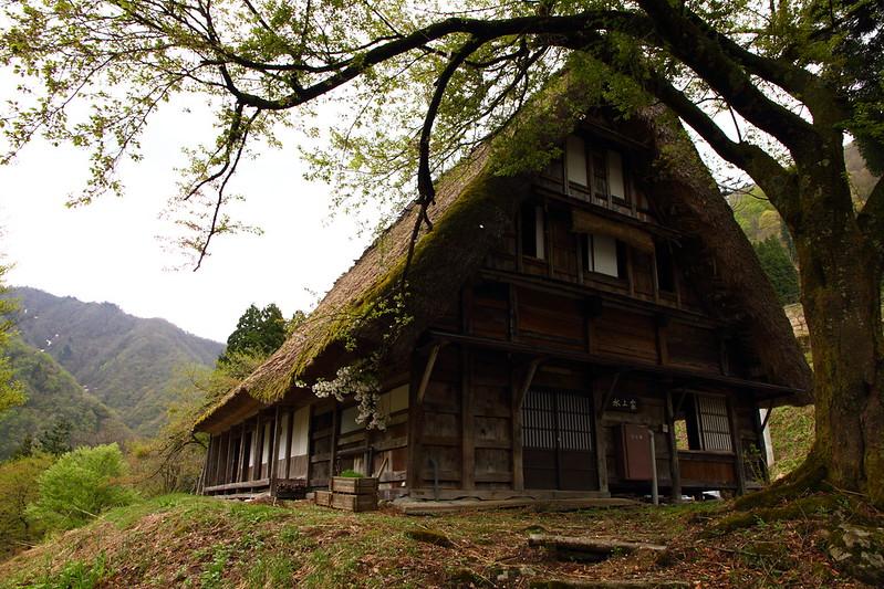 IMG_7837_2013 Nagano Trip