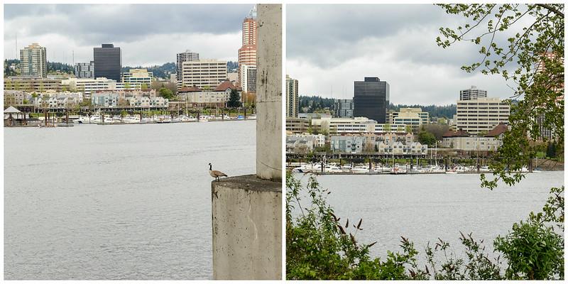04-05-13_Oregon 3
