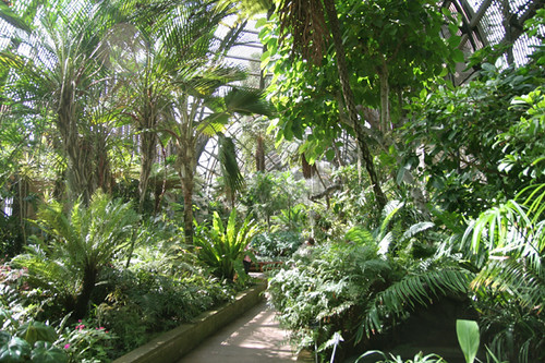 balboa botanical building (17)