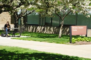 summer-campus025