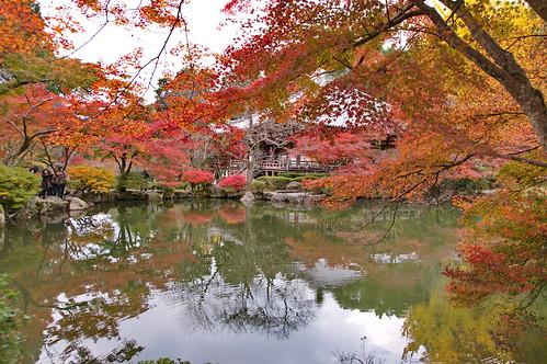 【写真】紅葉 : 醍醐寺