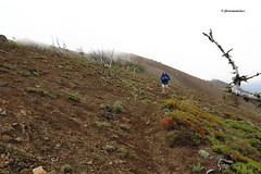 Shellrock Peak Hike (Ironstone Mtn Trail)