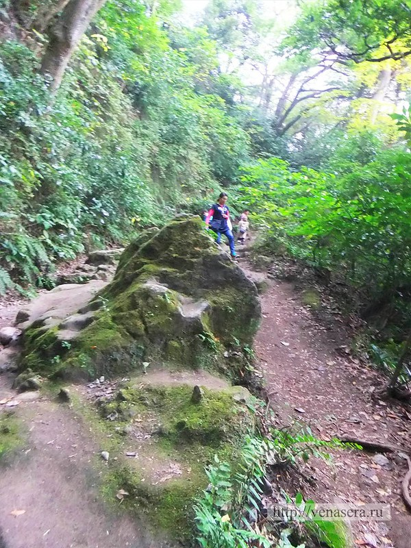 Горы в Камакура