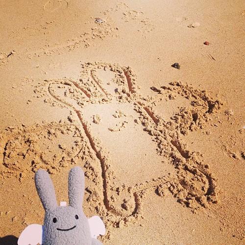 Angel Bunny on the beach.