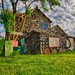 Heidelberg Project-Detroit, MI by Mike Boening Photography