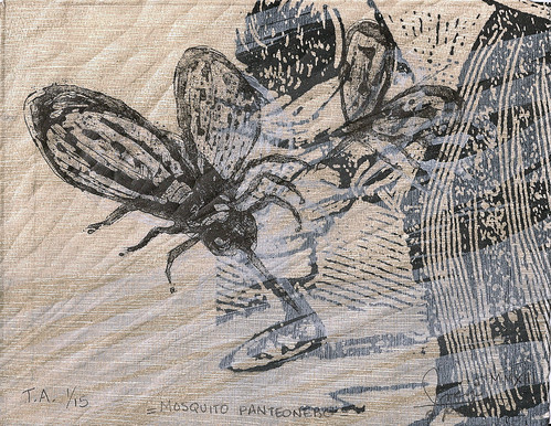 Mosquito Panteonero