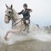 Clippity Clop Splishy Splashy - Horse Running Though Water by lomokev