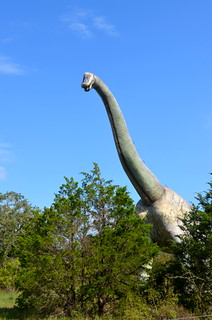 The Dinosaur Park Bastrop Texas (13)