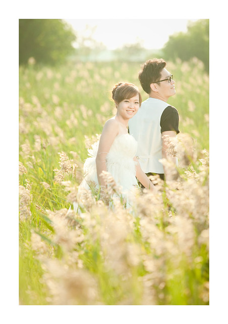 Flickr The Wedding Poses For the Professional Wedding #0: 95acb95b02 z