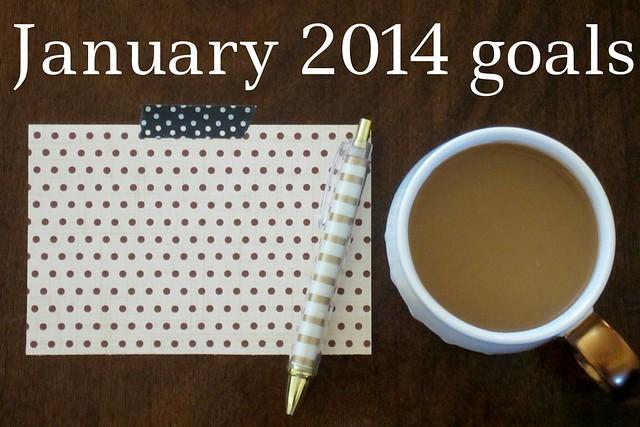 January goals: 2014