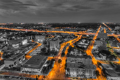 Tampa Streetlights and Car Trails Selective Color