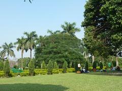 Jardins du Victoria Memorial