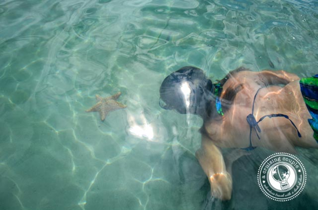 Starfish Beach Bocas Del Toro_3