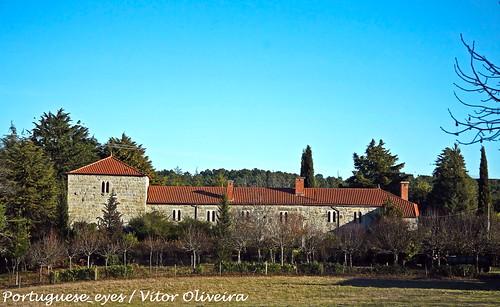 Castelo ou Torre de Ferreira de Aves - Portugal
