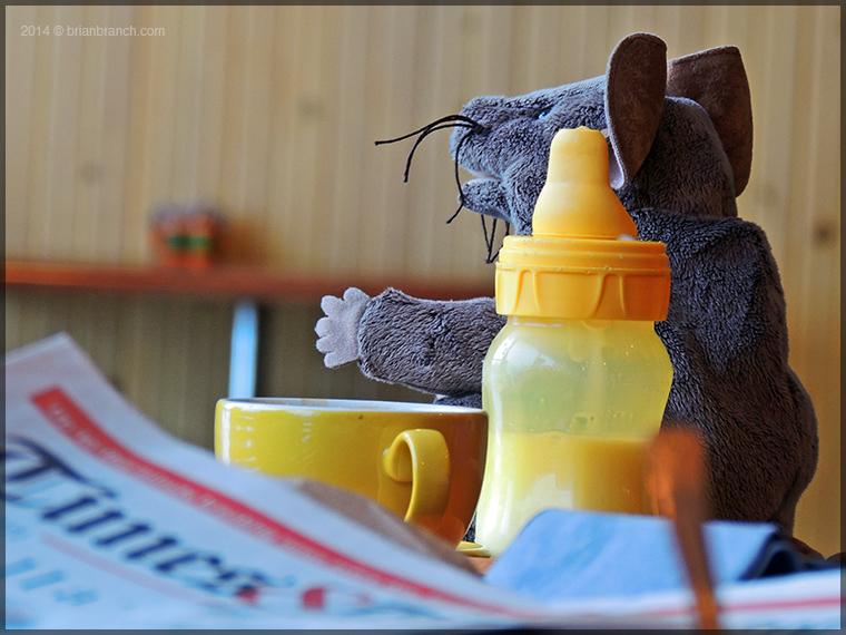 DSCN6276_milk_rat_and_coffee