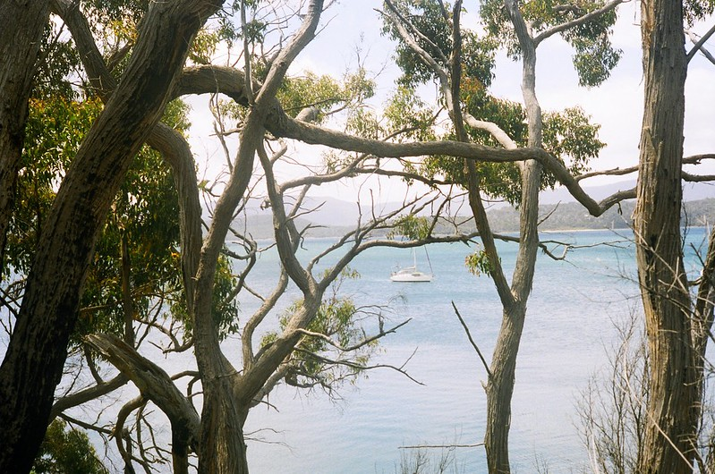 More Tasmania