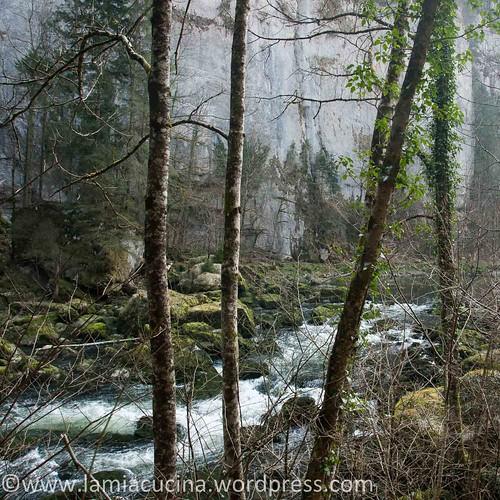 Doubs (1) Biaufond 2014 03 12_3465
