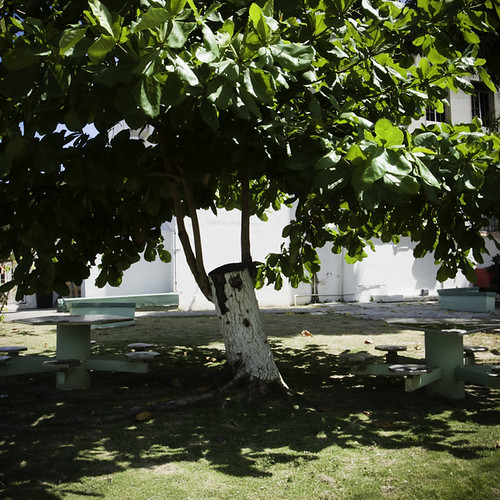 Empty Lawn Tables and Benches, Old San Juan, Puerto Rico