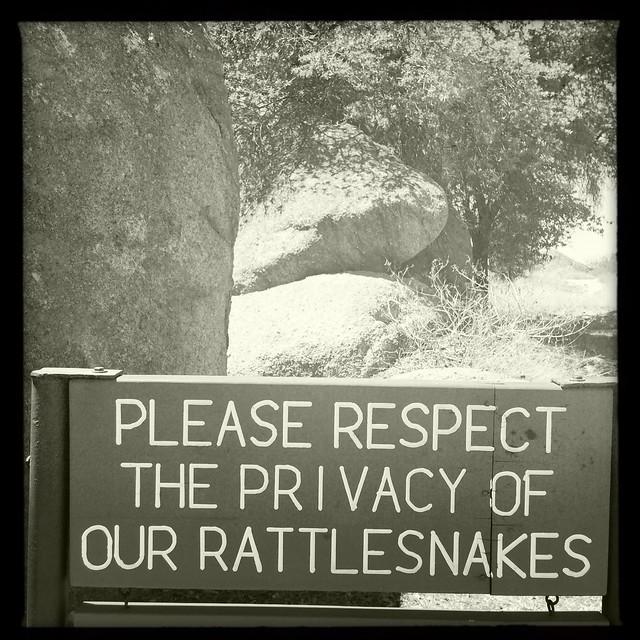 Rattlesnake Courtesy