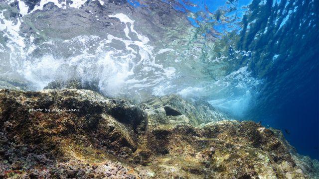 波を水中から見てみたり~