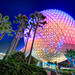 Spaceship Earth and the Trees