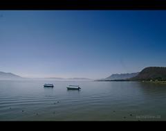 Lago de Chapala .-.