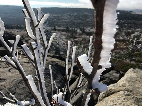 graysonhighlandsstatepark ice frost plant rock mountain landscape cold view tree