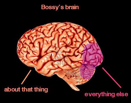 iambossy-brain-georgia-getz