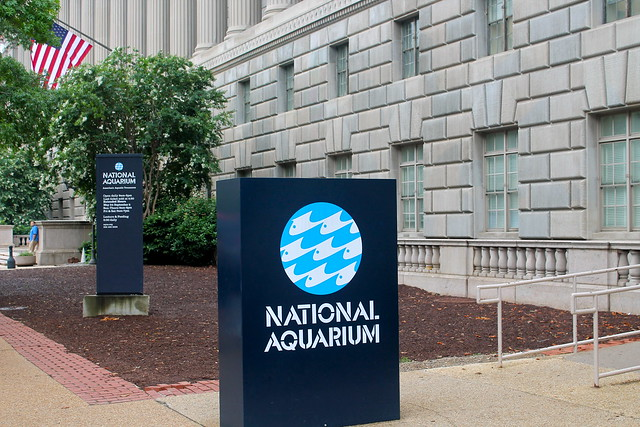 National Aquarium Washington Dc Flickr Photo Sharing