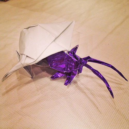 Origami Hermit Crab Designed By Robert Lang And Folded Me