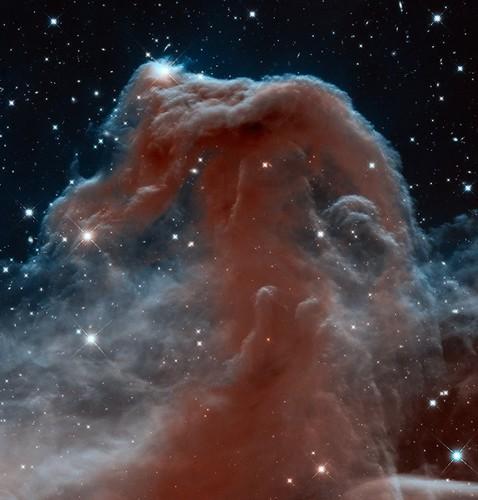 Infrared Horsehead Nebula