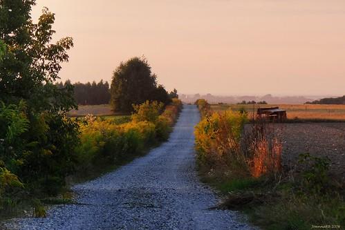 road sunset summer nature yellow landscape evening colours path poland polska natura hills droga lodz widok łódź przyroda moskwa wiev kolory wieczór lato zachódsłońca krajobraz ścieżka wzgórza jaroszki parkkrajobrazowywzniesieńłódzkich nawłoć lodzhillslandscapepark